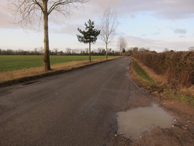 Road to West Dereham