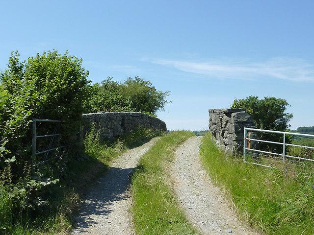 Bridleway and bridge north of Tregaron, Ceredigion