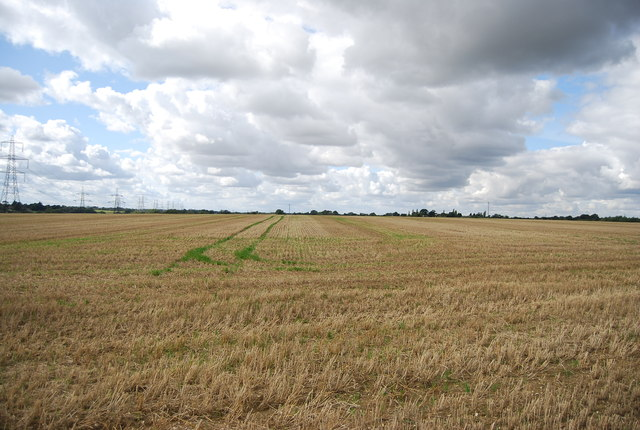 Large field by Henley Rd