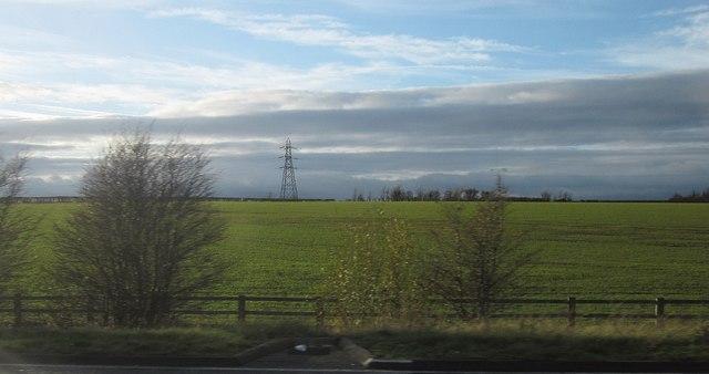 Field beside the M5