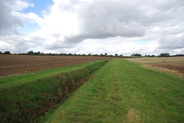 Field drain