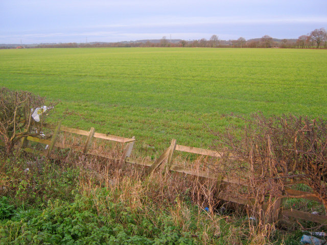 Arable land south of Cromwell