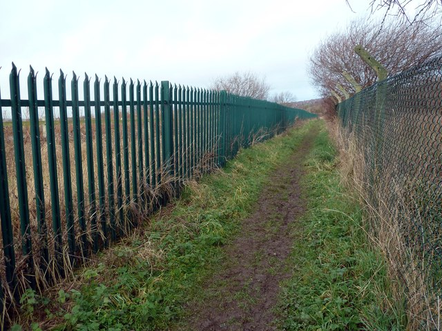 Footpath between green fences