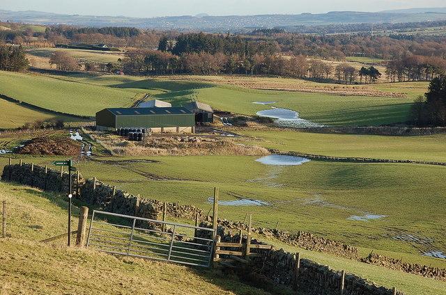 Farmland near Nine Mile Burn