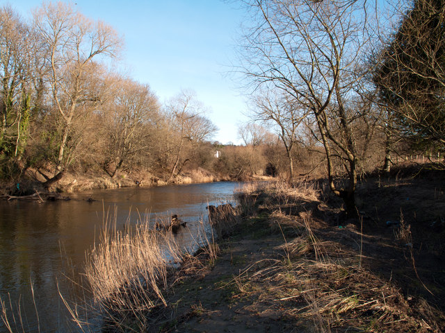 River Wear south-west of Newfield