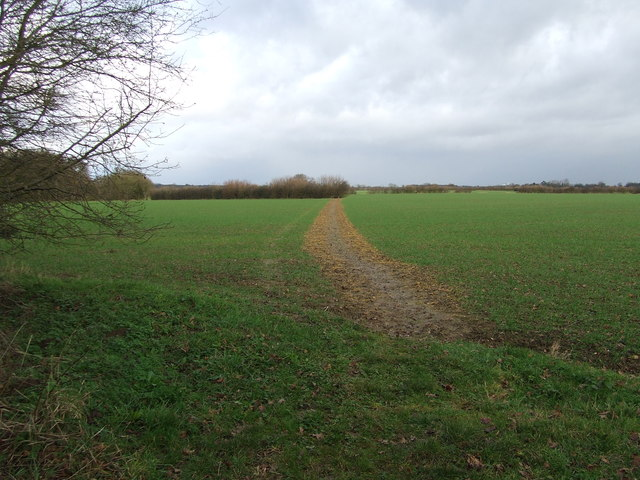 Marked Footpath