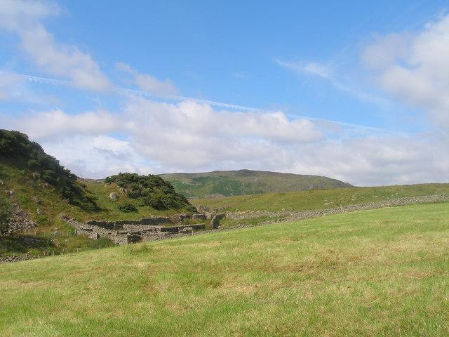 Sheep folds near Cronkley