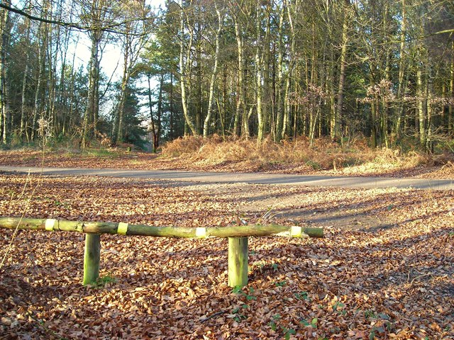 Crossroad in Harlow Wood