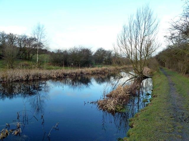 The Barnsley Canal near Smithies