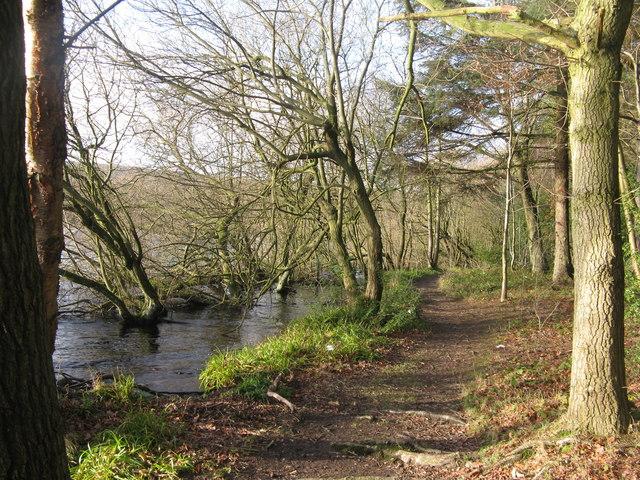 North edge of Broomhead Reservoir