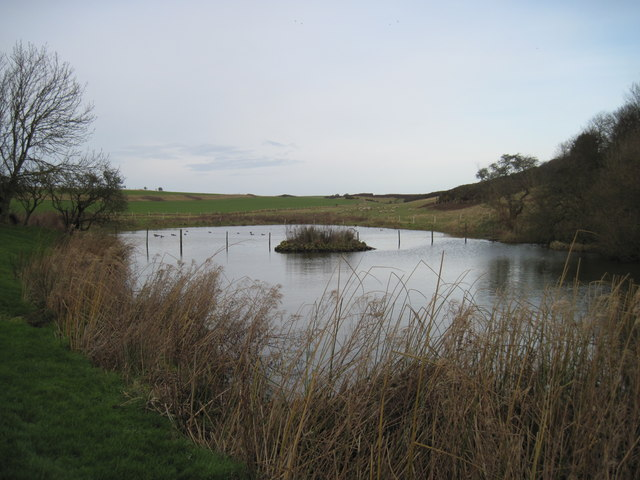 Buckton  Pond