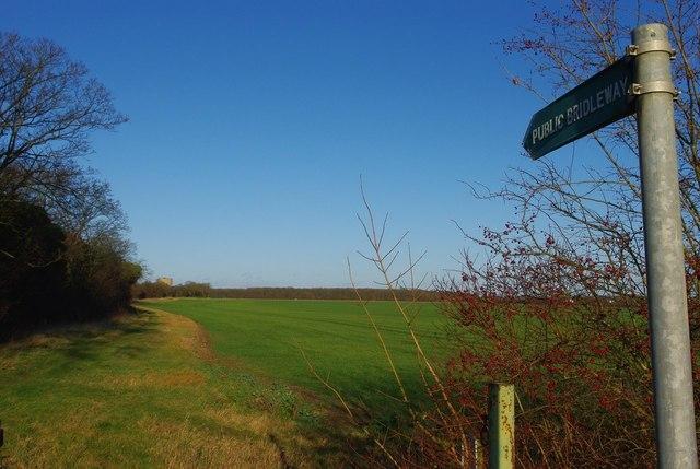 Potton Bridleway 14