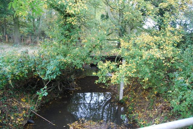 Stream at Red Bridge