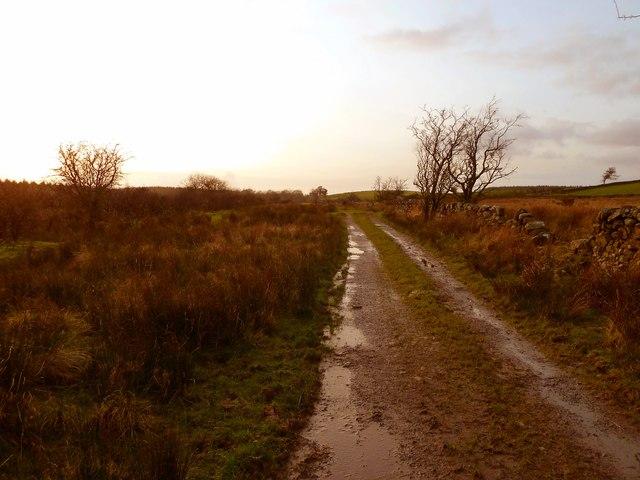 Track to Barnearnie
