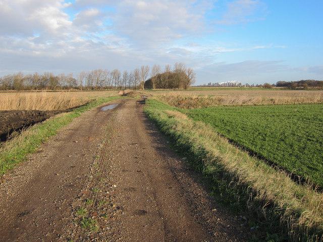 Bridleway along farm track