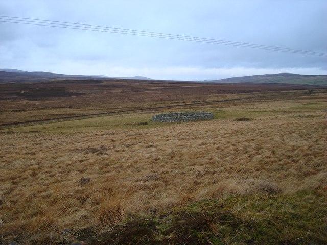 Sheepfold Near Kinbrace