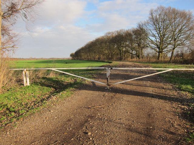 Gated bridleway