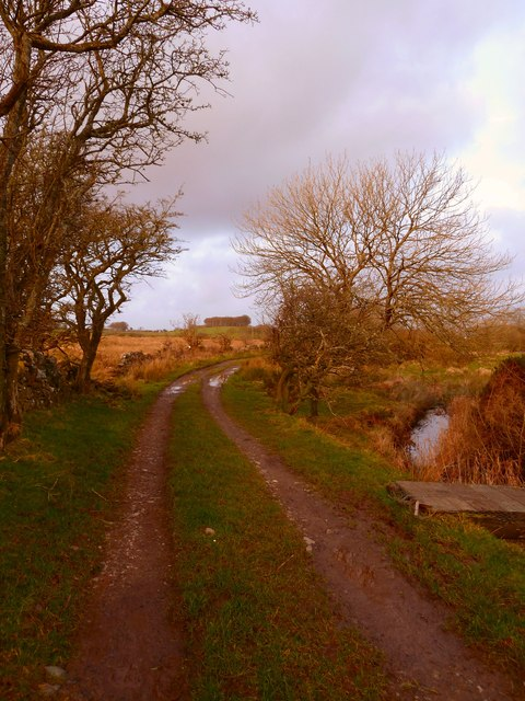 Track by Tarf Water