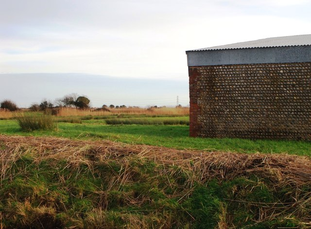 Pebbled wall of farm building, Pevensey Levels