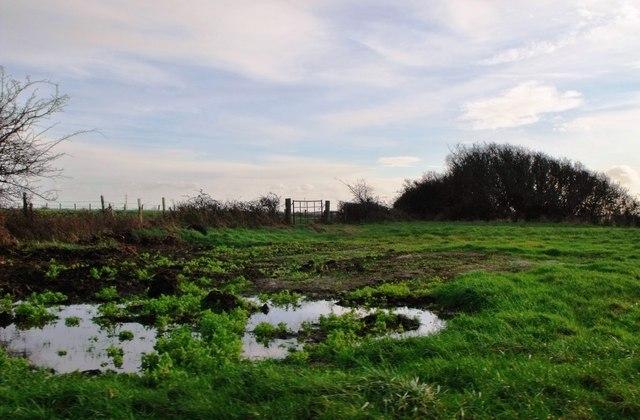 Farm storage area, Pevensey Levels
