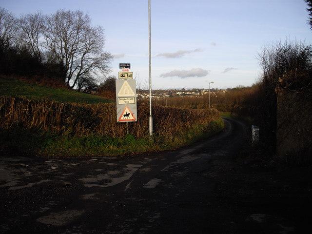 Lane to Pentre-tai Farm, Rhiwderin