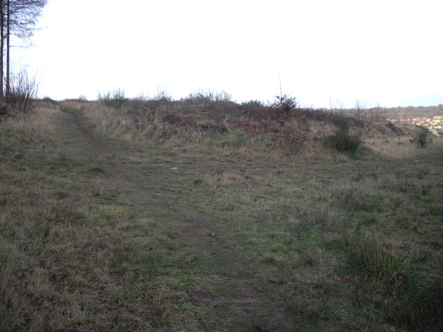 Footpath junction, Coed Bedw