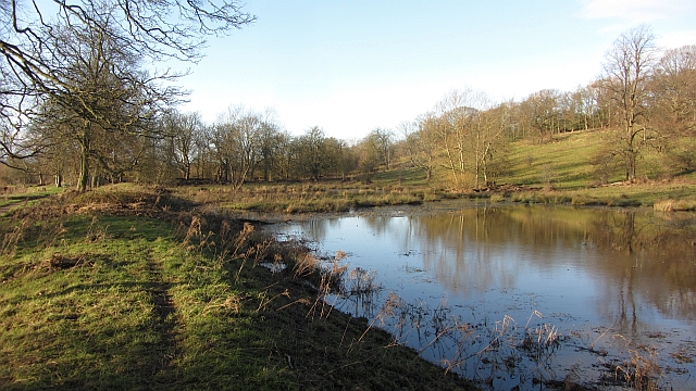 Flooded ground, Dalzell Park