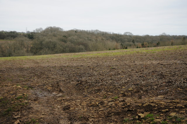 Arable field near Combend Manor