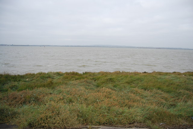 Salt marsh and estuary