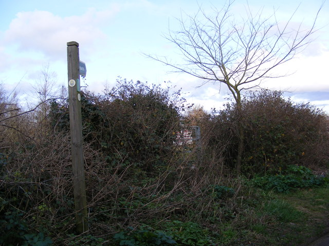 Footpath to Lower Road