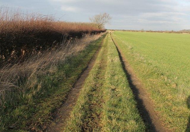 Farm Track off Pepper's Lane