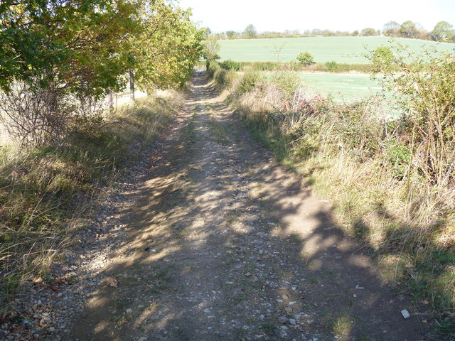 Towards the road