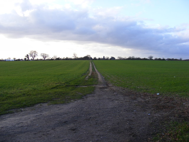 Footpath to New Buildings