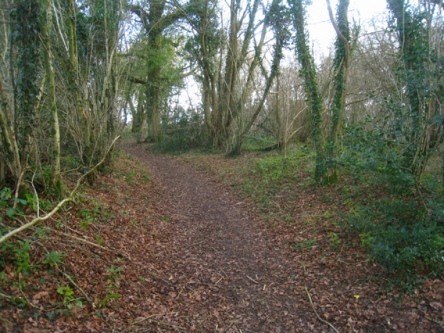Footpath by Small's Copse