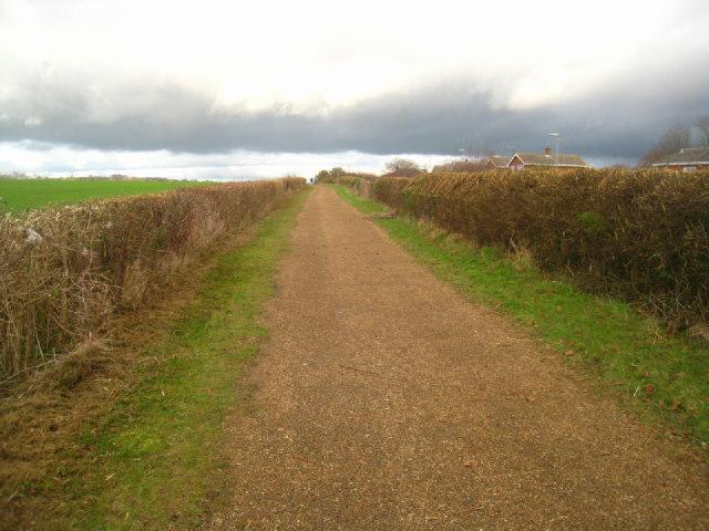Trim hedges - Kempshott cycle path