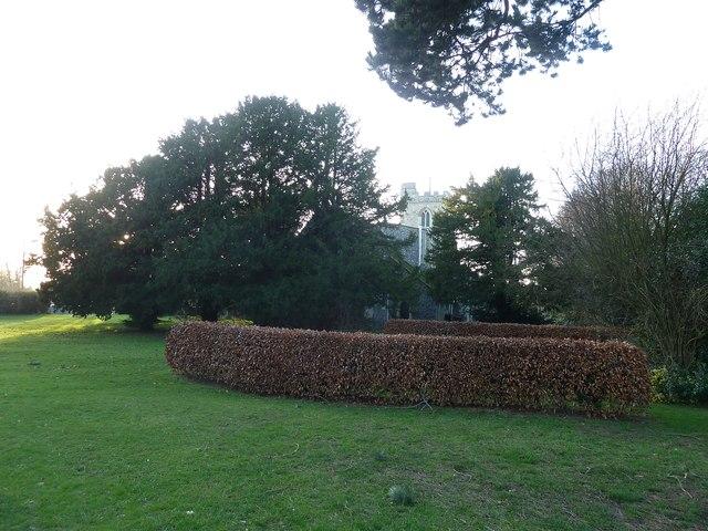 All Saints, Caddington in its churchyard