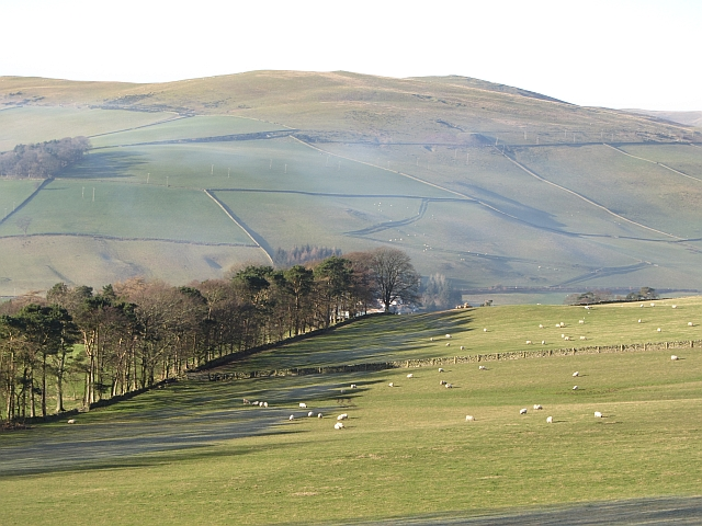 Fields, Venlaw Strip