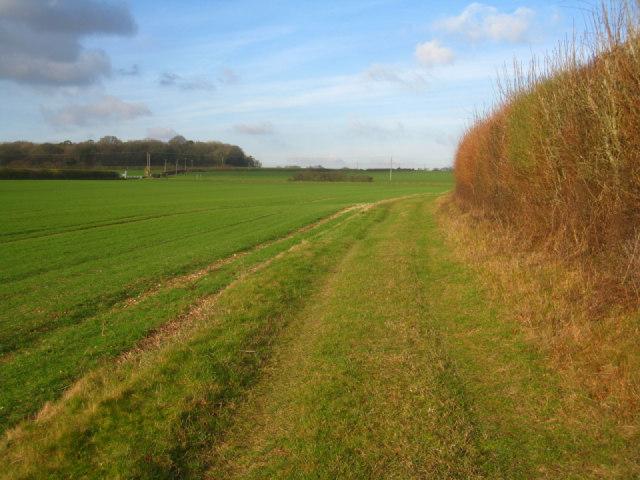 Path along Mothers East field