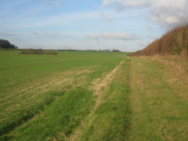 Path to Worting Road