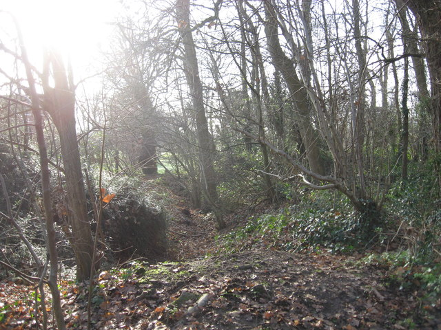 Woodland on the edge of a former sandstone quarry