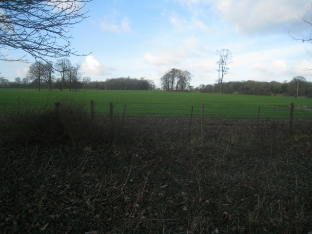 Looking into South field (18.5 acres)