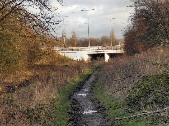 Path Under the Motorway