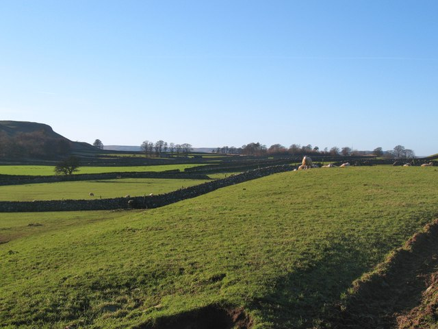 Sheep pastures from Nossil Lane