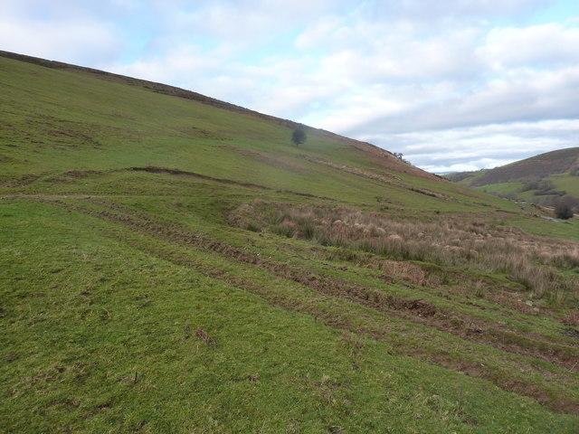 The eastern slope of Ffridd Rhosygarreg
