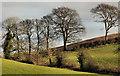 J4571 : Drumlin country (40) by Albert Bridge