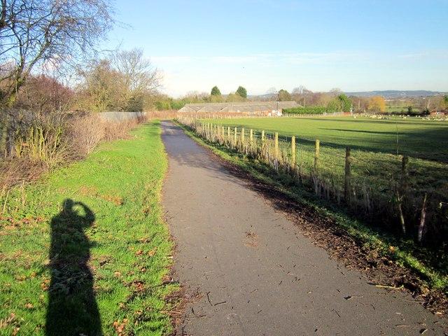 The Millennium Greenway near Mickle Trafford