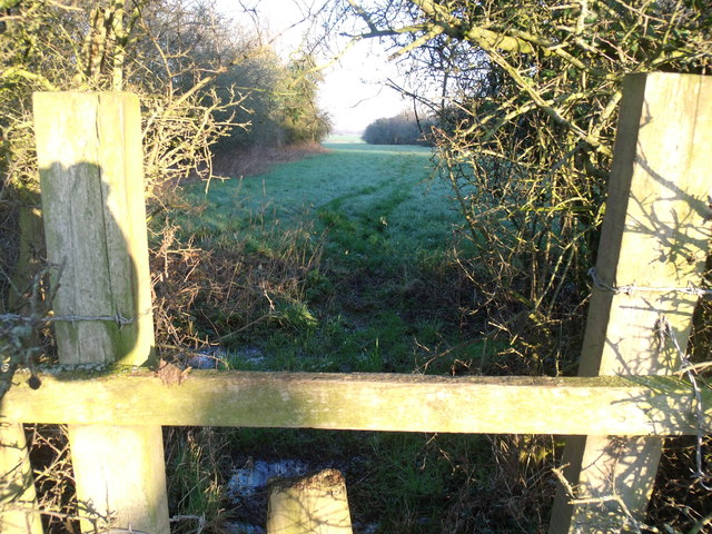 Foot path close to Leighton Brook on Leighton Grange side of the Brook