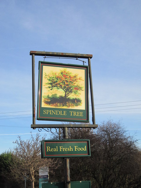 The Spindle Tree on Aberford Road