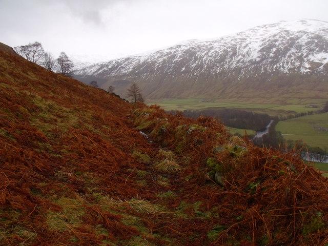 Boundary line on lower slopes of Carn Gorm in Glen Lyon