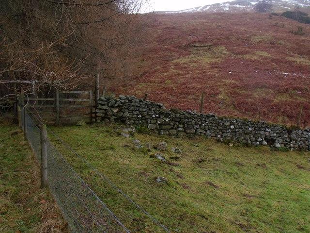 Boundary between pasture and heath above Camusvrachan in Glen Lyon
